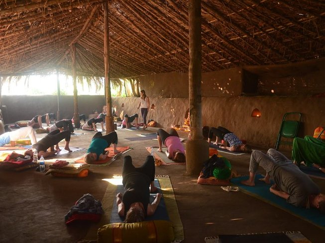 8 Days Yoga Retreat in India