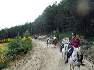 8 Days Castles of Gredos Mountains Horse Riding Holiday in Avila, Spain