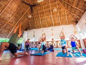 8 Days Ashtanga Yoga Holiday in Beautiful Sayulita, Mexico