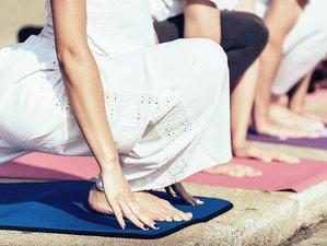 14 jours-120h en formation de professeur de hatha yoga dans le Luberon, France
