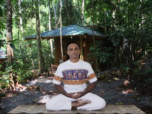 7 Day Spice Forest Meditation and Yoga Holiday with Ayurveda in Kandy, Central Province