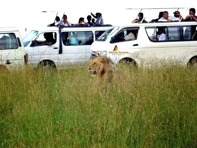 9 Days Family Safari in Kenya