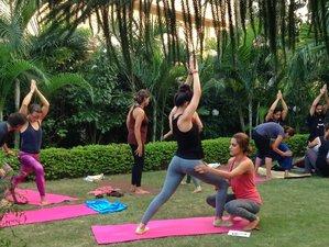 7 Days 50 Hours Hatha and Ashtanga Vinyasa Yoga Teacher Training in Chiang Mai, Thailand