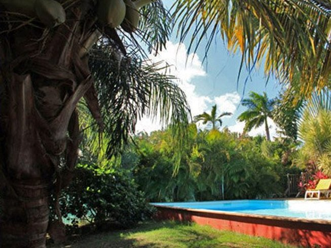 7 Days French Lesson and Surf Camp in Guadeloupe