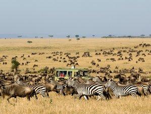 8 Days Great Migration Safari in Tanzania