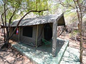 4-Daagse Betaalbare Safari in Natuurreservaat Balule en Nationaal Park Kruger, Zuid-Afrika