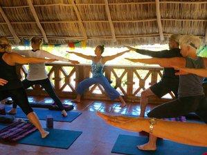 7 Day Yoga Surf Adventure for Women in Sayulita, Mexico
