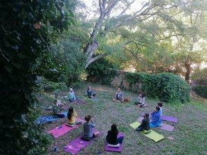 5 Day Pranayama Teacher Training Retreat in the Black Forest