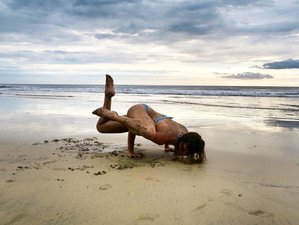 22 Days Intensive 200-Hour Yoga Teacher Training in Guanacaste, Costa Rica