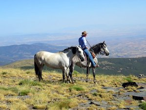 8 Day La Buena Vista Horse Riding Holiday in Granada, Andalucia