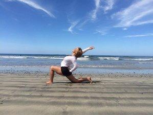 49 Day Rise & Shine Yoga: 200-Hour Online Yin-Yang Yoga Teacher Training