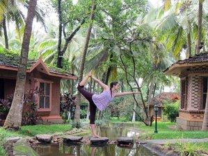 11 Days Ayurveda, Meditation, and Yoga Retreat in Kerala, India