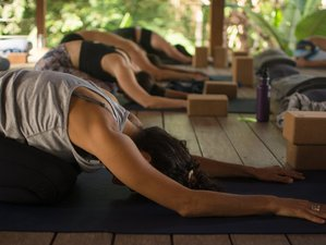 6 Day Build Your Own Yoga Holiday in Puerto Viejo de Talamanca
