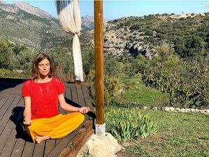 5 Day Secular Silent Teacher-Lead Mindfulness MBSR Online Retreat