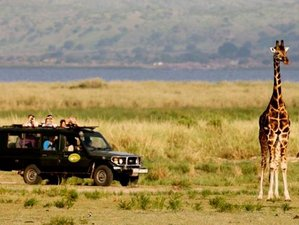 3 Days Safari and Honeymoon Package Uganda