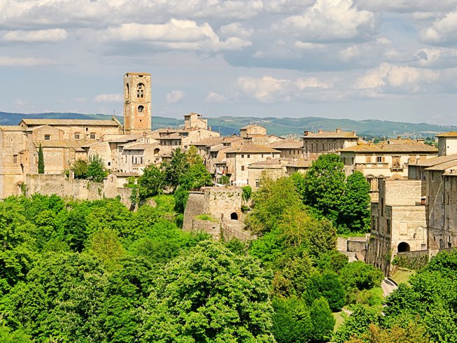 7 Days Tuscan Food and Wine Tour in Colle Val d'Elsa