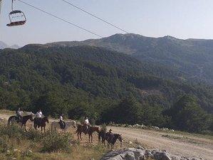 2 Days Mountain Horse Riding Holiday in Kolasin, Montenegro