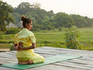 4 Day Isuka (Gratification) Suwashanthi Yoga and Meditation Retreat in Sigiriya, Central Province