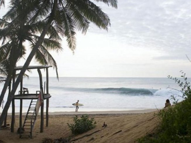 11 Days Xplor Tour and Surf Camp Arugam Bay, Sri Lanka