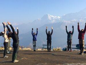 8 Days Yoga Holiday & Trekking to Poon Hill-Sarangkot in Pokhara, Nepal