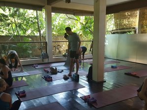 18 Days 200-Hour Ayurveda and Yoga Teacher Training in Bali, Indonesia
