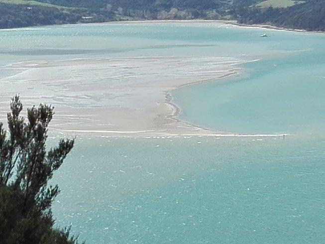 8 Days Yin Yoga Retreat in Northland, New Zealand with Cameron Tukapua
