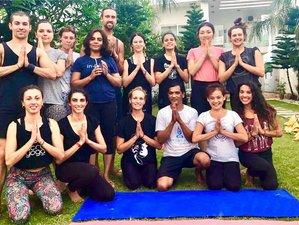 25 Day Family Operated 200-Hr Hatha, Iyengar, Ashtanga Vinyasa, Aerial  & Ayurveda Teacher Training