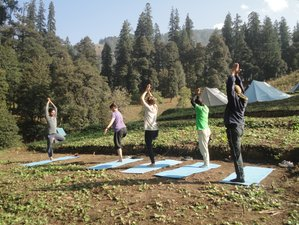 5 Day Trekking, Meditation, and Yoga Retreat in Manali