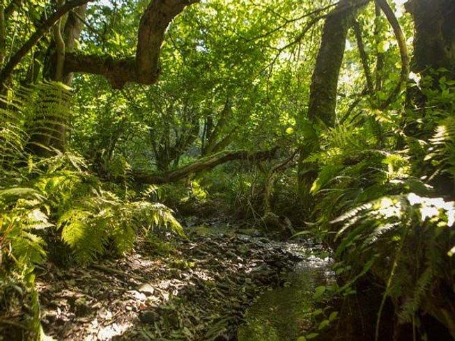 4 Tage Neujahr für Anfänger Meditation, Ayurveda und Yoga Urlaub in Cornwall, Großbritannien