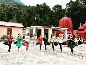 25 Day 200-Hour Multi Style Yoga Teacher Training in Dharamsala