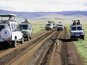16 Days Great Adventure Safari in Kenya and Tanzania