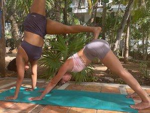 15 Tage 200-Stunden Yogalehrer Ausbildung auf Isla Mujeres, Quintana Roo