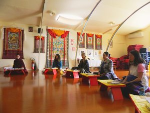 4 Day Stillness, Movement, and Awareness Silent Meditation Retreat in Colville, North Island