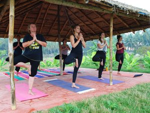8 Days Holistic Healing and Yoga Retreat Mysore, India