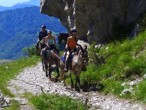 3 Day Weekend Horse Riding Holiday in Lombardy, Province of Brescia