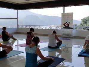 13 Day 100-Hour Multi Style Yoga Teacher Training Course in Rishikesh