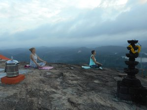 10-Daagse Familie Wellness en Yoga Retraite in India