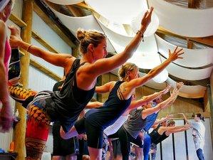 9 días para encontrar tu poder en un intenso retiro de yoga en Wainui, Nueva Zelanda