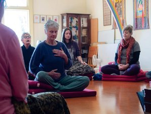 3 Day Mind Science, Training, and Transformation Meditation Retreat in Colville, North Island