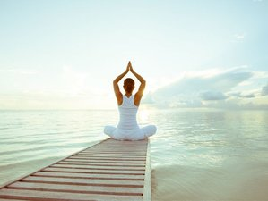 5 Day Bespoke Group Wellness Retreat with Detox and Yoga in Glastonbury, Somerset