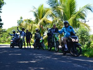 4 Day Blue Fires of Volcano Ijen Guided Enduro Motorbike Tour from Bali to Java