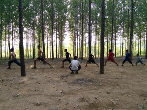 6 Month Affordable Shaolin Kung Fu Training in Tengzhou, Shandong