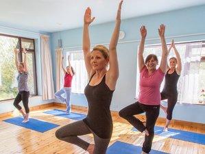 7 Days Mindful Meditation and Yoga Retreat in Galway, Ireland with Eleanor Dawson
