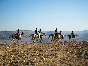 7 Days Round the Crater Horse Riding Holiday in Negev, Israel