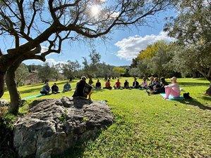 6 Day Ayahuasca Retreat in Malaga with Amazonian Master-Shamans