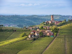 8 Days Exhilarating Wine Holiday in Piedmont, Italy