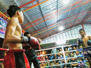 14 Days Train Muay Thai, Take the Boxing Fight and Recharge Your Energy in Wichian Buri, Phetchabun