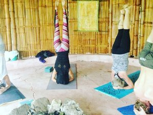 5-Daagse Herstellende Yoga Retraite in Olon, Ecuador