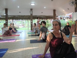 70 Day 200-Hour Online and Self-paced Traditional Yoga Teacher Training