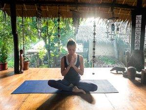 7-Day Wellness Yoga Retreat Program in Puerto Princesa, Palawan